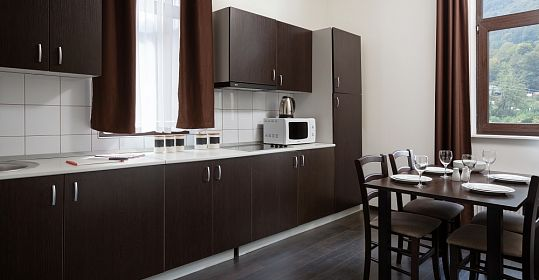2-room apartments with a kitchen Forest view